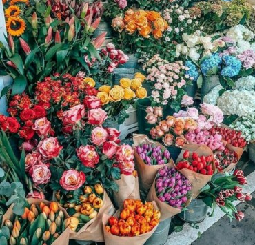 Flowers, Flowers You Need To Plant In Your Garden Based On Your Zodiac
