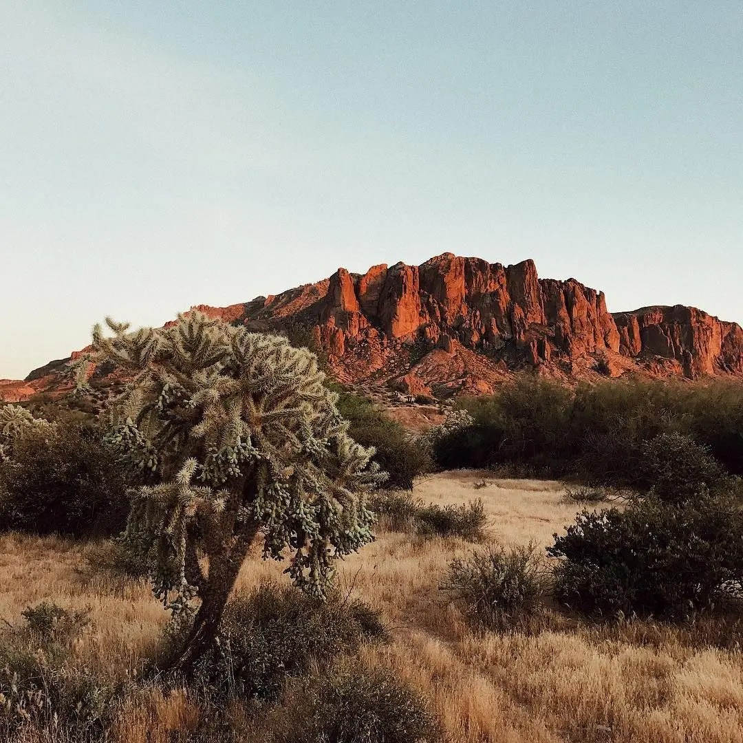 5 Family Fun Orientated Places to Try in Arizona