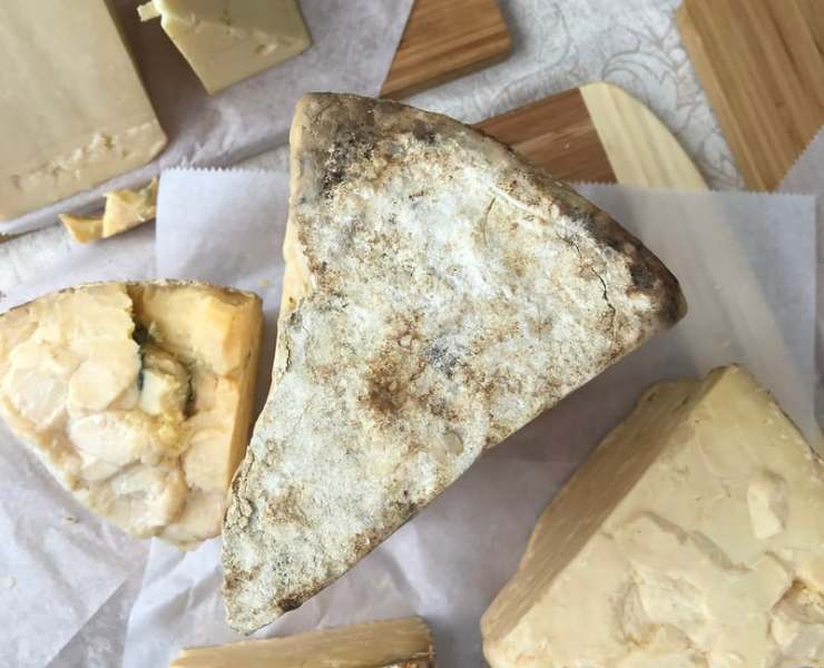 10 Fantastic Cheese Recipes You Have To Try