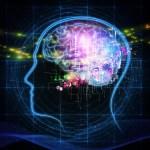 imagen de neurotecnología cerebro
