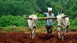 Agrarian Class
