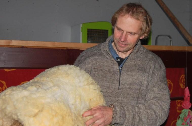 wolle Das Schaf und seine Wolle – Interview mit Frank Gorter