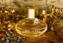 #Perfume: L'Occitane au Brésil lança Amburana para o Natal