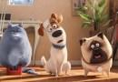 """#Cinema: """"Pets – A Vida Secreta dos Bichos 2"""" apresenta Bola de Neve como super-herói"""