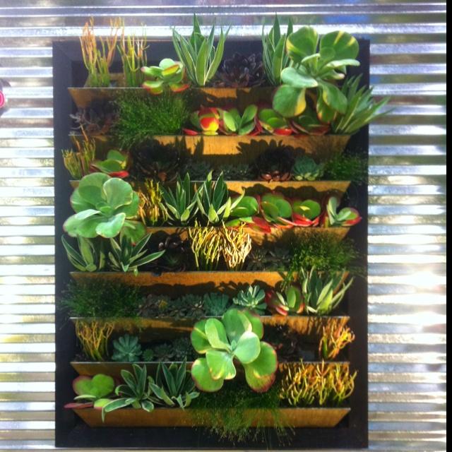Mur Vegetal En Palette Interieur Sofag