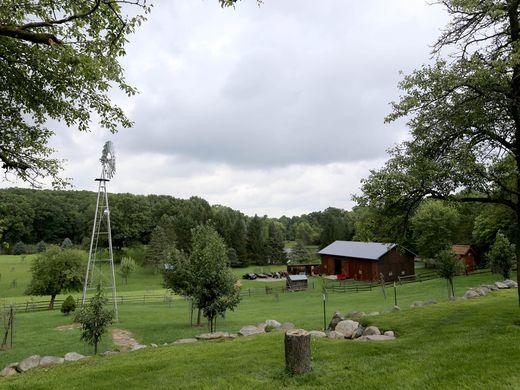 R-E-N-T- Why it's better to rent for a first-time homesteader
