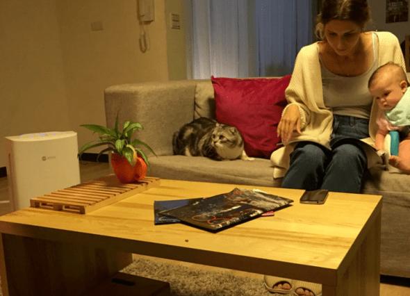 pet_in_home