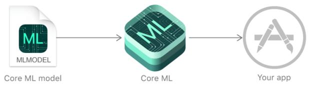 Core ML 機器學習框架是什麼? core-ml-overview