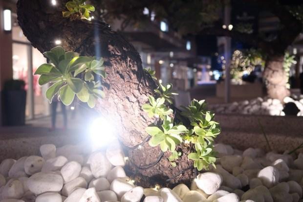 輕薄隨身高階數位相機 Canon PowerShot G7X Mark II 評測,參加神腦線上年中慶再送更多好禮! IMG_0140-1