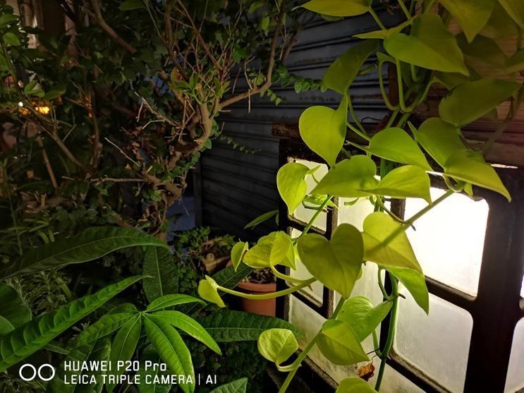 HUAWEI P20 Pro評測,超強手持夜拍,照片美到讚嘆不絕 IMG_20180510_204539