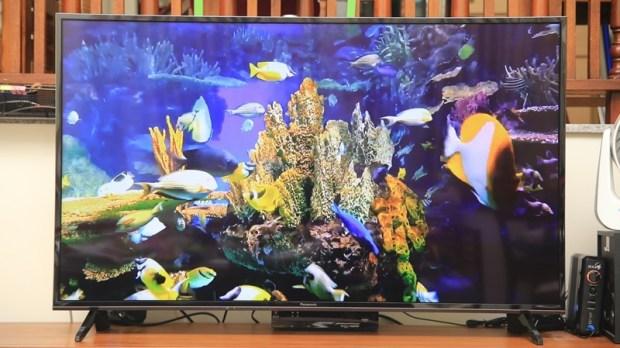 Panasonic 49 吋 4K電視(TH-49FX600W),功能齊全,最超值的平價首選 IMG_8508