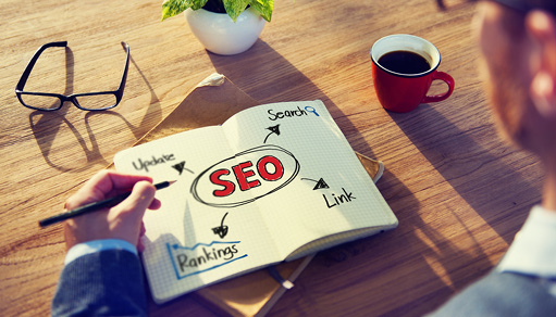 Softclusion SEO Services