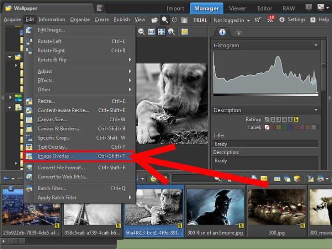 Zoner Photo Studio Pro windows