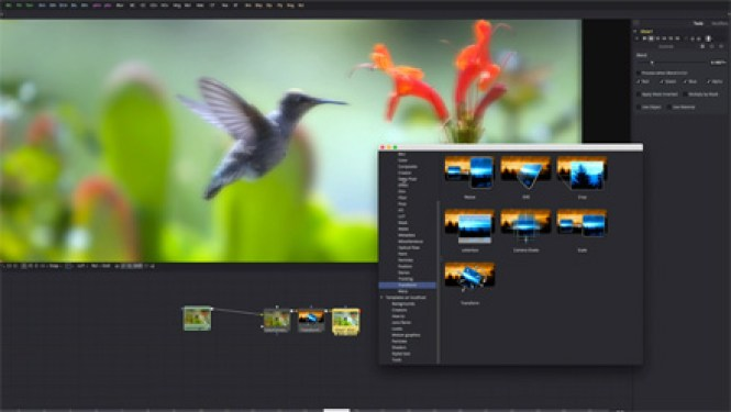 Blackmagic Fusion windows