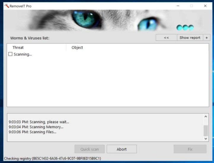 RemoveIT Pro windows