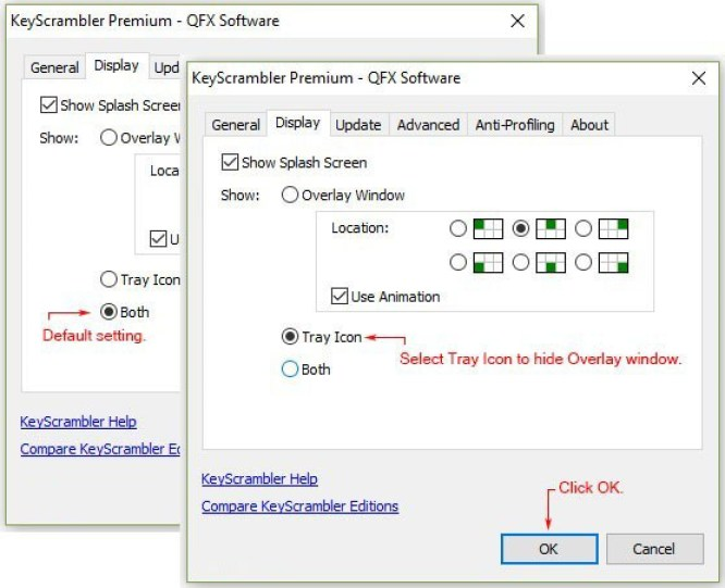 QFX KeyScrambler Professional latest version