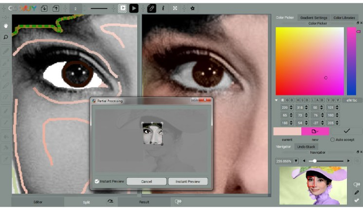 CODIJY Colorizer Pro windows
