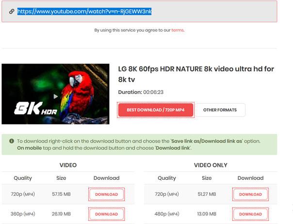 YouTubeMP4.to