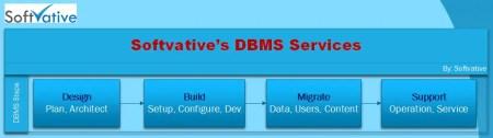 Softvative DBMS Service Model