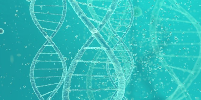 Most cancer mutations are due to random DNA copying 'mistakes' | ScienceDaily