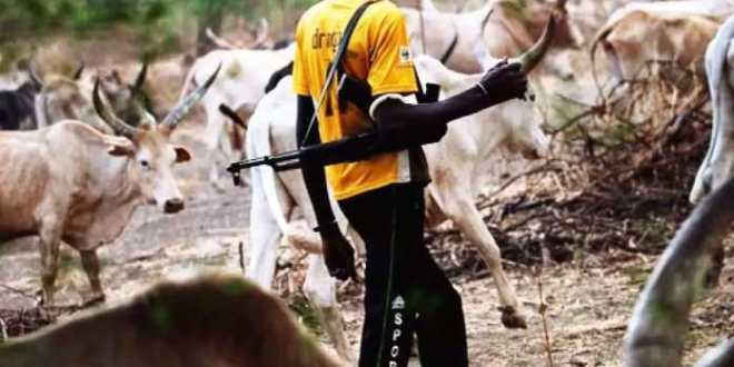 Herdsmen Crisis: Senators Recommend Incoporation of Naval Special Forces for Covert Operations | This Day