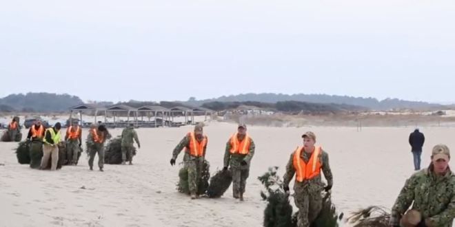 The Navy base where SEALs train is being protected by Christmas trees   Pilot Online