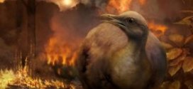 When the dinosaurs died, so did forests — and tree-dwelling birds | Science Daily