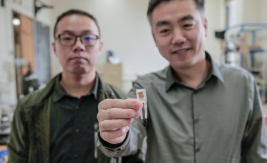 Tiny implantable device short-circuits hunger pangs, aids weight loss | Science Daily