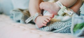 First baby born via uterus transplant from a deceased donor | Science Daily