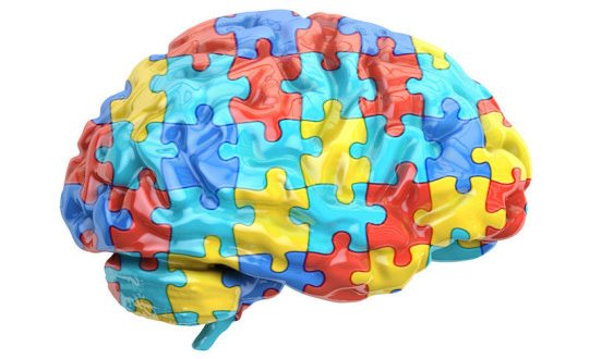 High levels of estrogen in the womb linked to autism| Science Daily