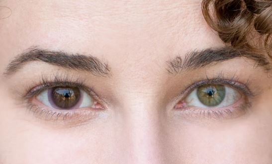 Transitional contact lenses are finally here| CNET