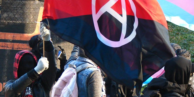 What is antifa? Behind the group Trump wants to designate as a terrorist organization | ABC News
