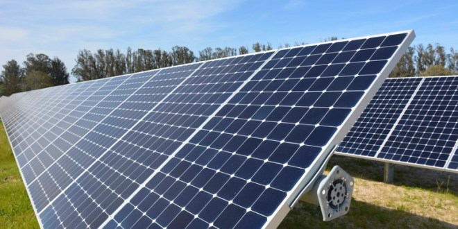Plunging solar energy prices spell bright future for clean electricity | DW News
