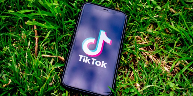 India bans TikTok, WeChat, other Chinese apps over 'security' concerns | DW News