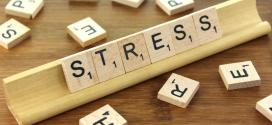 10 ways to manage stress and stay calm under pressure as a business leader | Business Insider