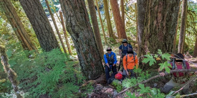 304th Rescue Squadron Guardian Angels rescue lost father and daughter near Mt Hood | DVIDS