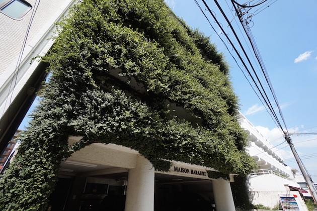 maison_harajuku-303-facade-03-sohotokyo