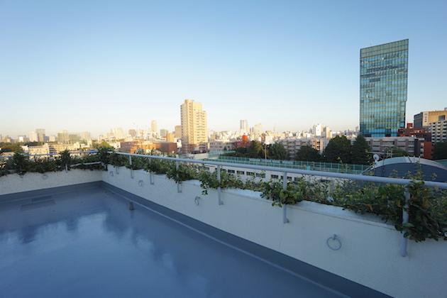 maison_harajuku-303-roofbarcony-03-sohotokyo