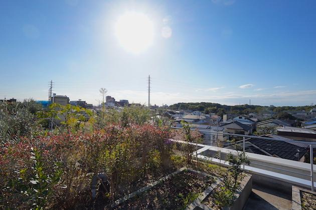 refugeo`forest-N307-rooftop-01-sohotokyo