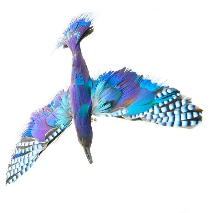 Broche blue bird Soiéphémère plumasserie
