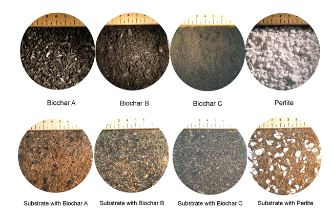 Images of biochar substrates used in study
