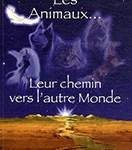 Les animaux leur chemin vers l'autre monde - Soins énergétiques Alsace