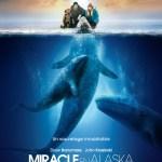 Miracle en Alaska - Soins énergétiques Alsace
