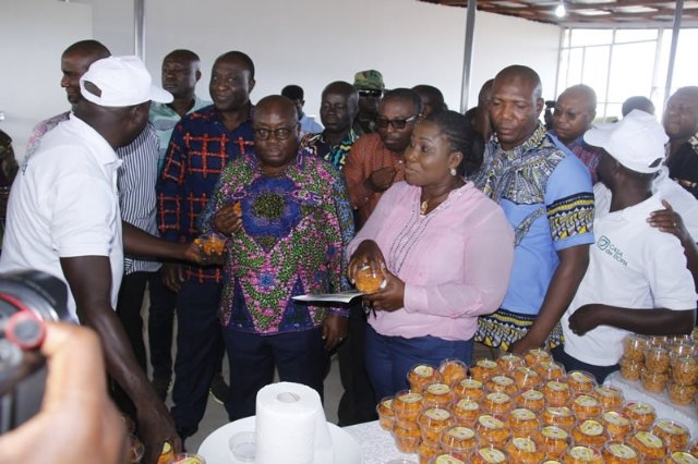 President Addo Dankwa Akufo-Addo at Potato Processing Factory