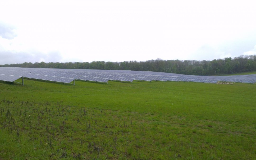 100,000 Solar Panels Cleaned By Clean Solar Solutions