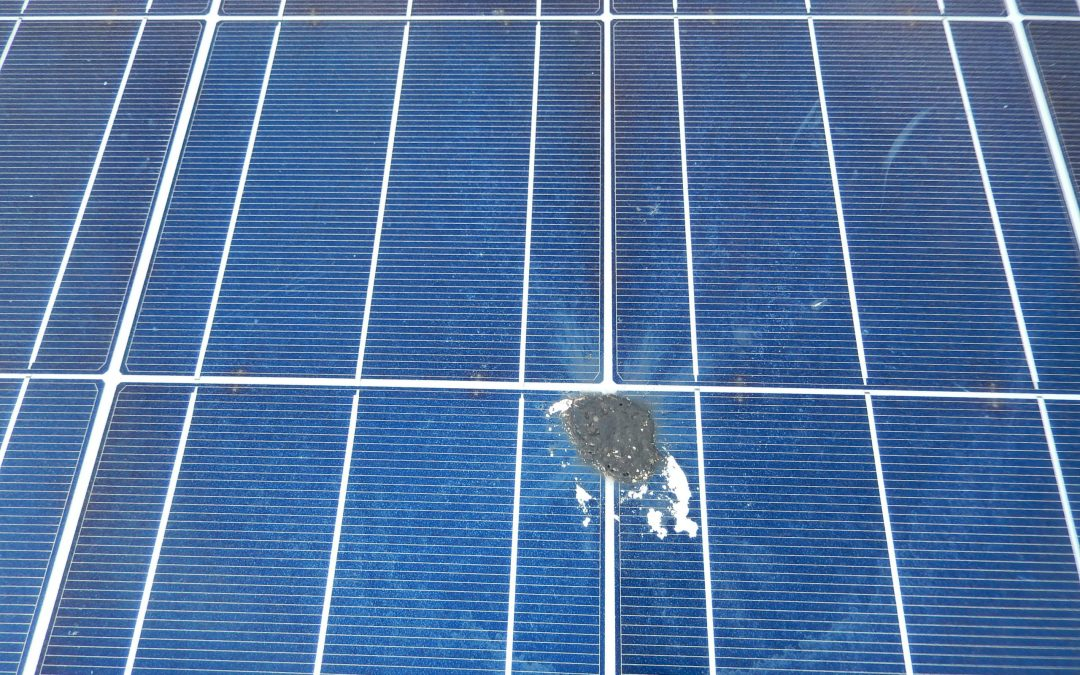 Commercial Rooftop Solar Panel Cleaning Completed In Llanelli