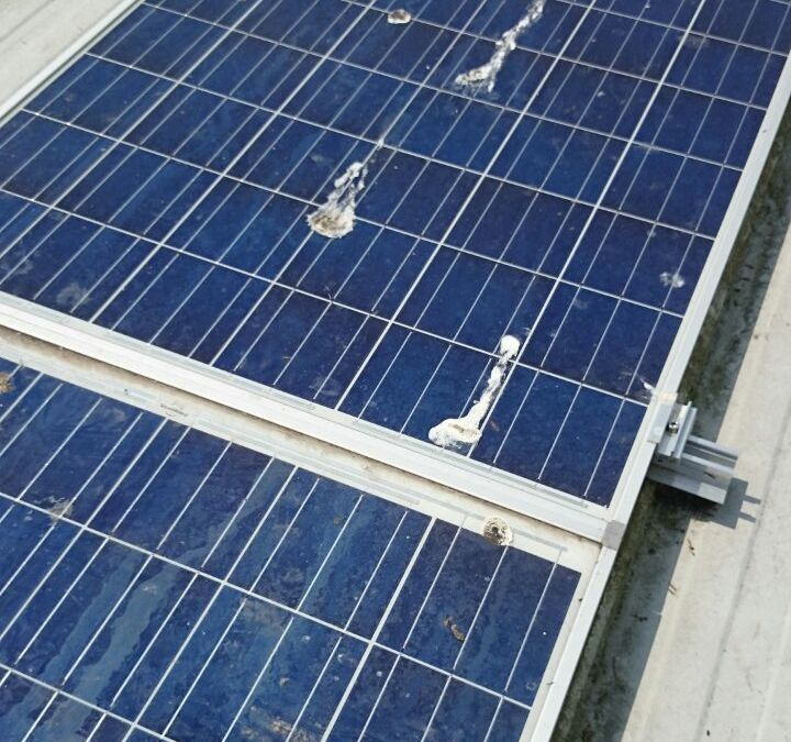 Commercial Solar Panel Cleaning In Eastbourne For Edventure