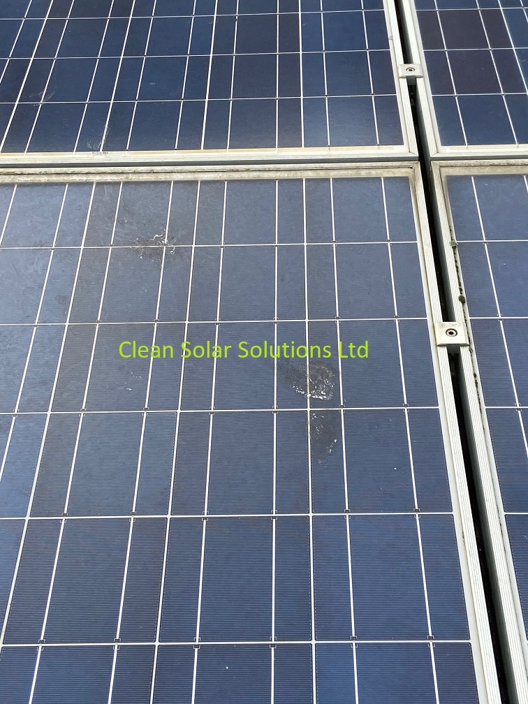 Dirty solar panels that need cleaning in Chiswick