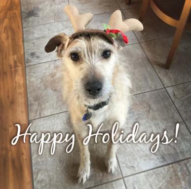Happy Holidays from Solarte BJJ!