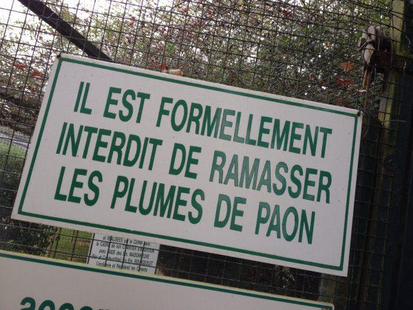 Refuge animalier Mayenne